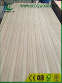 Quarter Cut Teak Plywood for India market