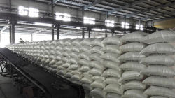 warehouse of urea prilled