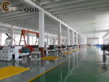 WPC decking floor and WPC wall panel product line