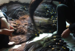 Collect Virgin Remy Hair Bulk