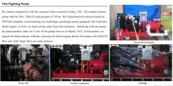 True Case of Multistage Centrifugal Pump for Fire Fighting in Australia