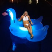 inflatable LED swan