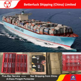 Sea Freight/ Logistics services /Shipping from China to South Europe