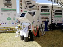 Nampo Harvest Day 2019 in Nampo Park Bothaville