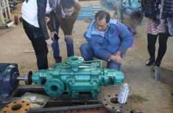 Indonesia Client Mr Anthony have interesting to our ZD series multistage pump