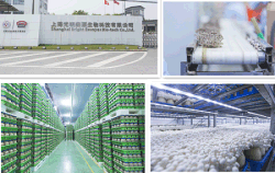 The engineering project for Bright Esunyes Shanghai FengXian edible production base