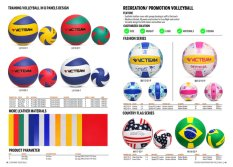 Recreation/Promotion Volleyball