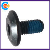 Round head Hes socket locking screws