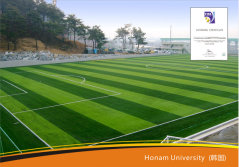 Artificial Grass Project in Asia