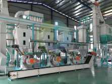 Thailand 2t/h palm fiber pellet production line