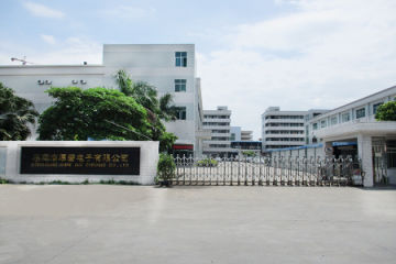 DONGGUAN HOPE ELECTRONIC CO LTD