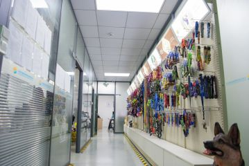 Dongguan Hanyang Pet Products Co., Ltd.
