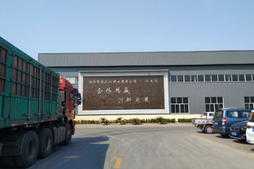 Hebei Linghuixing Valve Co., Ltd.