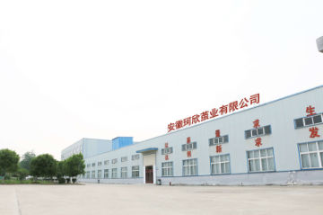 Anhui Kexin Cocoon Industry Co., Ltd.