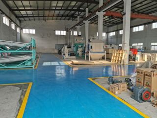 Chongqing Qiaoxing Machinery & Equipment Company