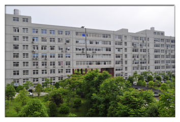 Wuhan Seifree Technology Co., Ltd.