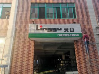 Guangxi Linggu Medical Technology Co., Ltd.