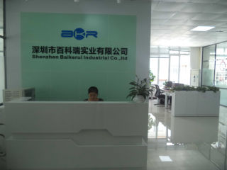 Shenzhen Baikerui Industrial Co., Ltd.