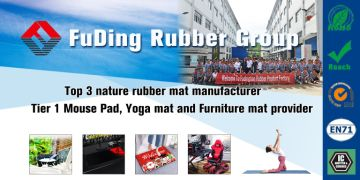 Guizhou Fuding Rubber & Plastic Co., Ltd.