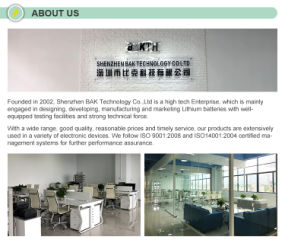 Shenzhen Bak Technology Co., Ltd.