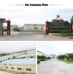 Wengyuan Henghui Chemical Coating Co., Ltd.