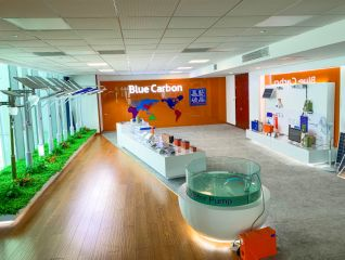 BLUE CARBON TECHNOLOGY INC.