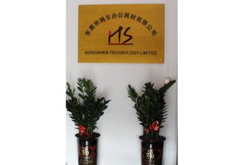 Hongshen Technology Co., Ltd.