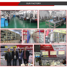 Guangzhou ALNSU Auto Parts Co., Ltd.