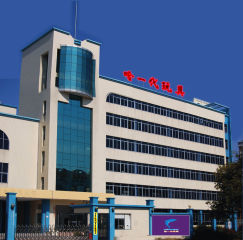 Guangdong Hayidai Toys Co., Ltd.