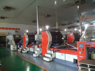 SHANDONG LIPENG CO., LTD.
