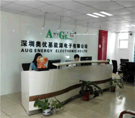 Shenzhen Aoyouji Energy Electronics Co., Ltd.