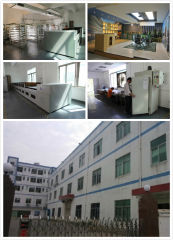 Peony Lighting Technology Co., Ltd.