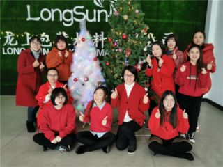 Linan Longsun Packaging Material Co., Ltd.