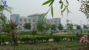 Linyi Yanjun Carbon Material Co., Ltd.