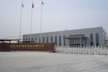 Shandong Yongjie Bearing Manufacturing Co., Ltd.