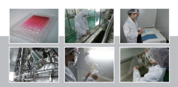 Guangdong Victory Biotech Co., Ltd.