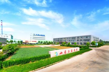 Shandong Terry Supply Chain Management Co., Ltd.