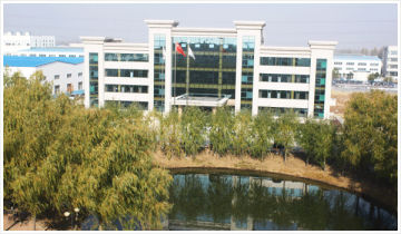 Shandong Do-World Imp. & Exp. Co., Ltd.