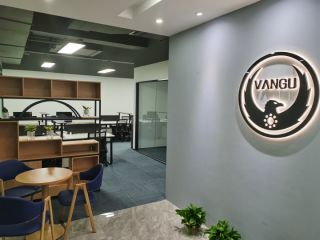 Shenzhen Vangu Technology Co., Ltd.