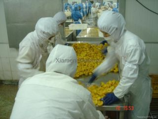 XIAMEN SINOFROST CO., LTD.