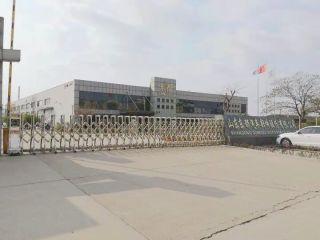 Shandong Dongdu Auto Parts Co., Ltd.