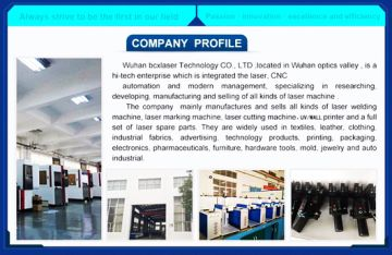Wuhan Bochuangxing Laser Technology Co., Ltd.