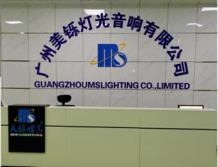 Guangzhou MS Lighting Co., Ltd.(China)