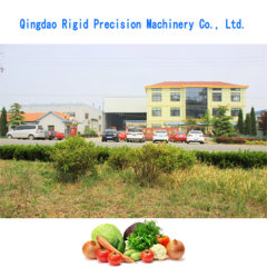 Qingdao Rigid Precision Machinery Co., Ltd.