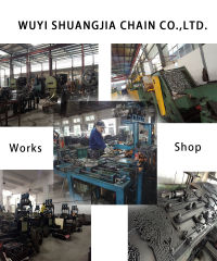 Wuyi Shuangjia Chain Co., Ltd.