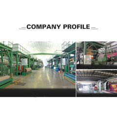 Qingdao Changlion Material Technology Co., Ltd.