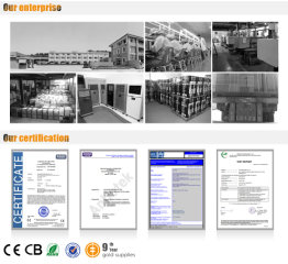 Cixi Gaite Electric Co., Ltd.
