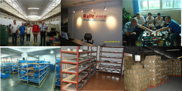Dongguan Walle Sealing Technology Development Co., Ltd.