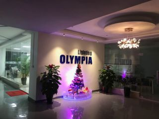 Dongguan Olympia Lighting Co., Ltd.