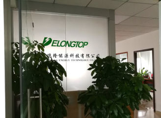 shenzhen Delong Energy Technology Co., Ltd.